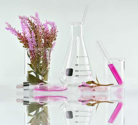 Natuurlijke organische plantkunde en wetenschappelijk glaswerk, Alternatieve kruiden geneeskunde, Natuurlijke huidverzorging schoonheidsproducten, Onderzoek en ontwikkeling concept.