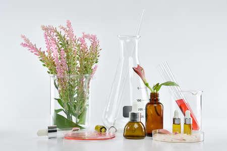 Kosmetische Flaschenbehälter mit grünen Kräuterblättern und wissenschaftlichem Glas, leeres Kennsatzpaket für Brandingmodell, Forschung und entwickeln natürliches organisches Schönheitskosmetikproduktkonzept.