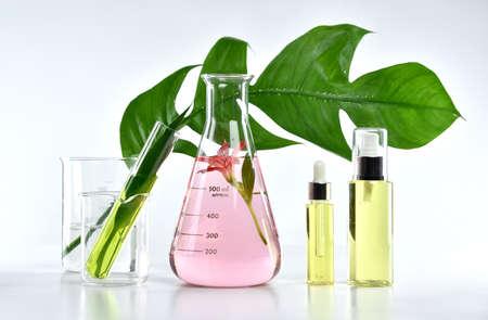 material de vidrio: Productos naturales de belleza de cuidado de la piel, extracción natural de botánica orgánica y cristalería científica, recipiente de cosméticos etiqueta en blanco para la marca de maqueta.
