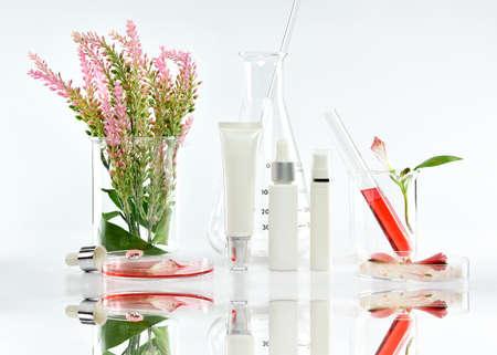 Kosmetische Flaschenbehälter mit rosa Kräuterblättern und wissenschaftlichen Glaswaren, leeres Aufkleberpaket für das einbrennende Modell, erforschen und entwickeln natürliches organisches Schönheit skincare Produktkonzept.