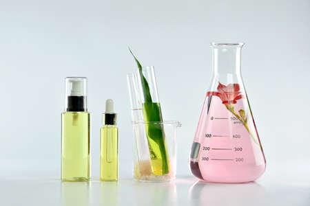 자연 스킨 케어 뷰티 제품, 자연 유기 식물학 추출 및 과학 유리, 빈 레이블 화장품 상자에 목업 모델링.