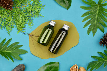 Cosmetic bottle containers on green herbal leaves background, Blank label for branding mock-up, Natural organic skincare beauty product concept.