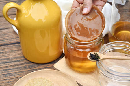 Scoby, Hand holding tea mushroom with kombucha tea, Healthy fermented food, Probiotic nutrition drink for good balance digestive system. Banque d'images