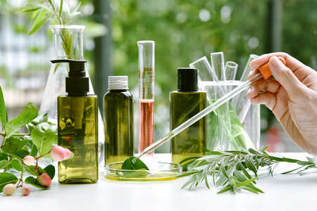 Scientist with natural drug research, Natural organic botany and scientific glassware, Alternative green herb medicine, Natural skin care beauty products, Research and development concept. Banco de Imagens