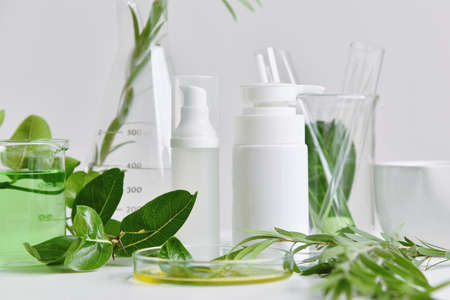 Natural skin care beauty products, Natural organic botany extraction and scientific glassware, Blank label cosmetic container for branding mock-up.