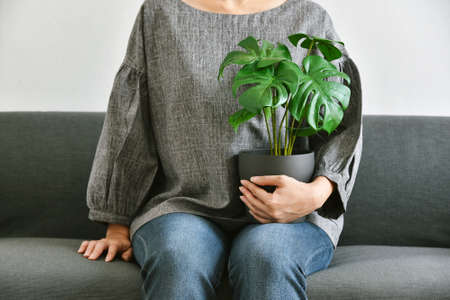 Human and nature, Houseplants growing in living room for indoor air purification and home decorative, Woman sitting on sofa with green tropical tree. Foto de archivo