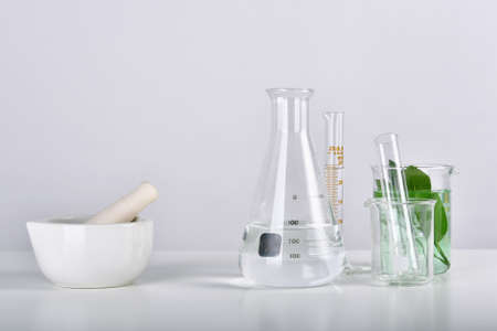 Natural drug research, Plant extraction in mortar, Alternative green herb medicine, Natural organic skincare beauty products, Laboratory and development concept.