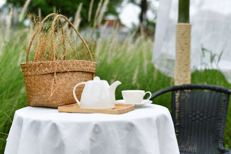 English tea time in garden, Relaxing time with favorite drink, Cup of warm tea and teapot serving in beautiful nature meadow view. Imagens