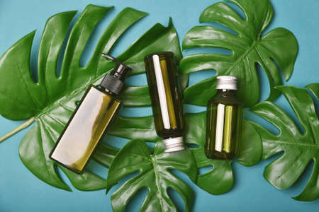 Natural skincare beauty product, Cosmetic bottle containers packaging with green nature leaves, Blank label for organic spa branding mock-up,Herbal healthy skin care.