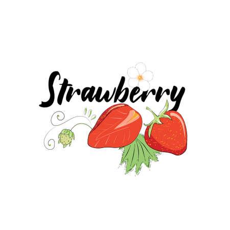 Vector image of strawberries