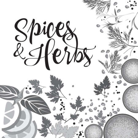 spices and kitchen herbs