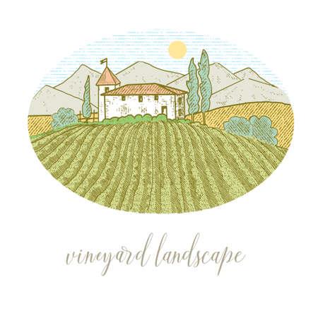 Rural house with a vineyard Vektoros illusztráció