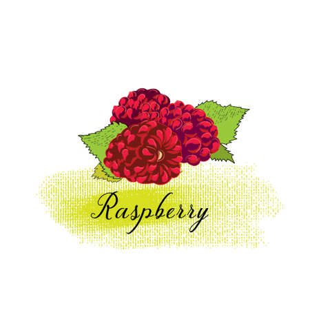 isolated image of a Raspberry