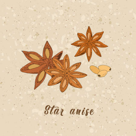 Star anise of waste paper
