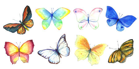 Collection of watercolor images of beautiful butterflies. A set of illustrations of an insect. Hand drawing. Isolated Clipart.