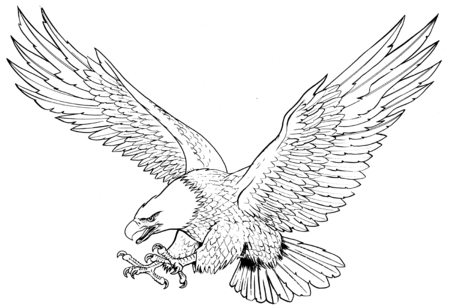 Eagle Descending Black Line Illustration