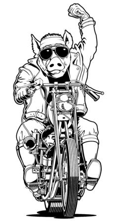 漫画バイカー豚 写真素材