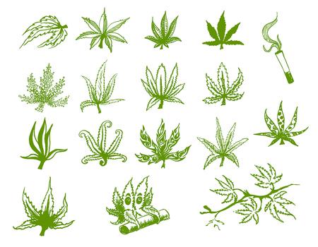 Vector hand drawn icon illustration set of green hemp cannabis leaf on white background