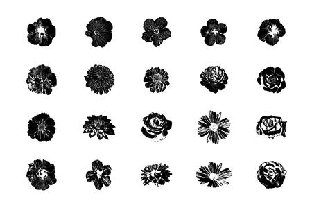 Vector Hand drawn sketch of flower symbols illustration on white background