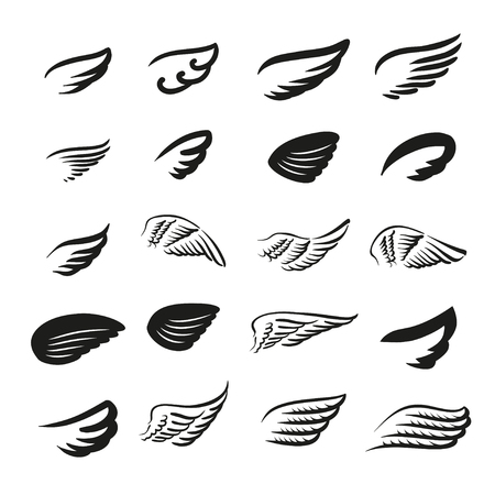 Vector illustration concept of wings logo.