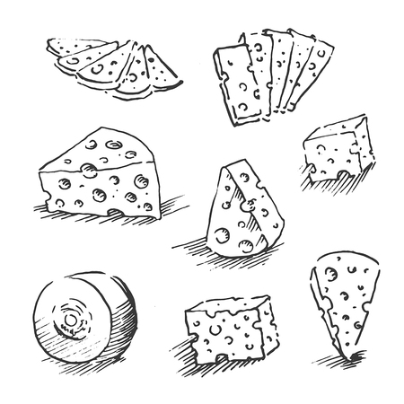 Cheese isolated on a white background, Hand drawn cheese outline vector illustration. Cheese sketch, doodle collection