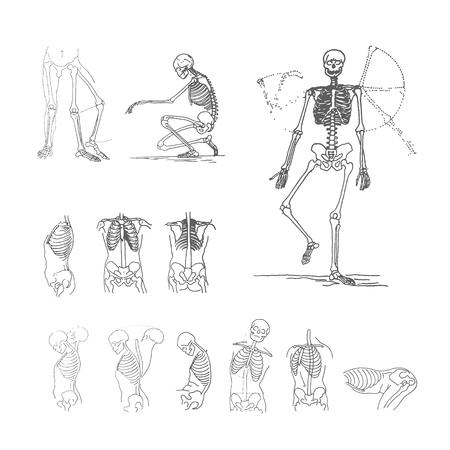 Vector illustration concept of skeleton. Black on white background Illustration