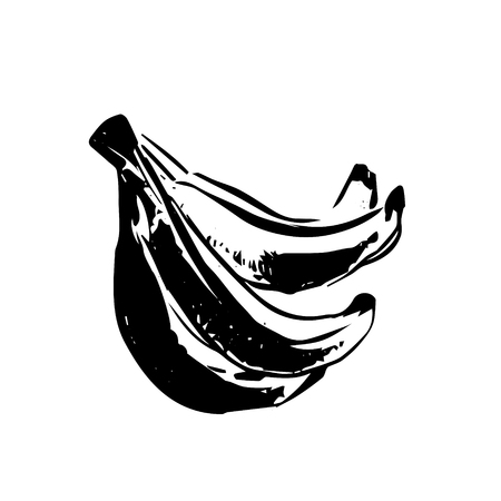 Vector hand drawn black sketch of banana on white background