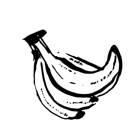 Vector hand drawn black color sketch of banana on white background Illustration