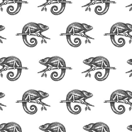 Chameleon hand drown illustration sketch seamless pattern Çizim