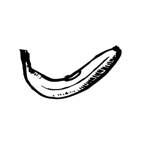 Vector hand drawn black color sketch of banana on white background Çizim