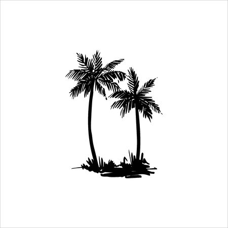 Vector hand drawn illustration of palm tree