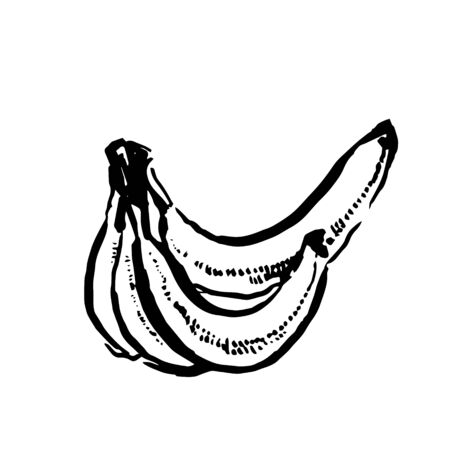 Vector hand drawn black color sketch of banana on white background Ilustrace