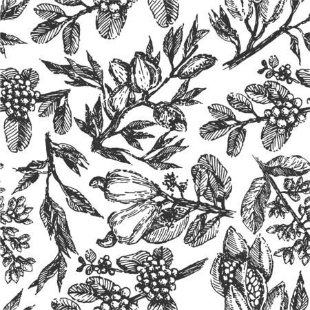 Branch with pistachio nuts, cocoa beans, almonds, cashew nuts and coffee beans plant hand draw illustration sketch. Seamless vector pattern