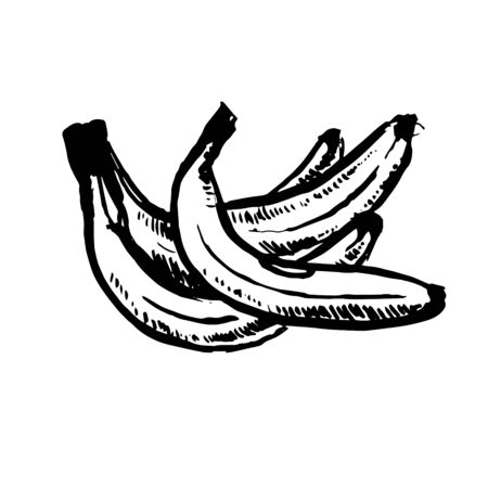 Vector hand drawn black color sketch of banana on white background Foto de archivo - 133781217
