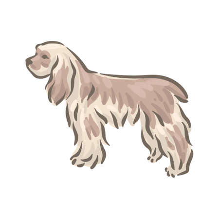 Cute dog Cocker-spaniel breed pedigree vector illustration 向量圖像