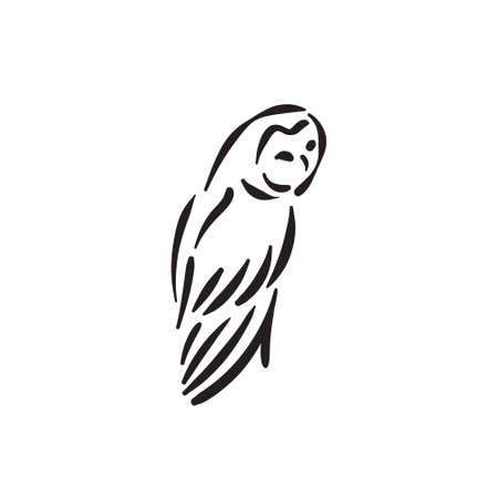 Line style owl bird hand drawn illustration