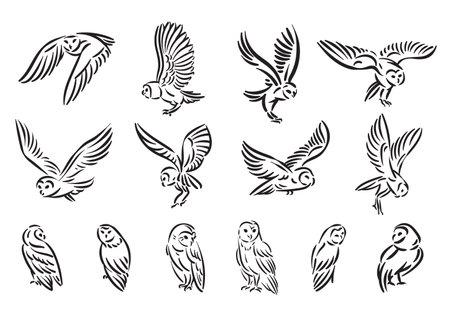 Line style owl bird hand drawn illustration set