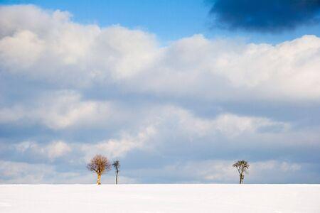 lonesomeness: winter Landscape with trees on horizon