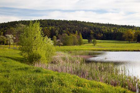 fish farming: id�lico paisaje en primavera con la piscicultura lago