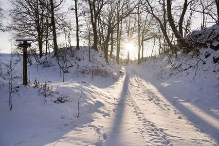 iciness: fresh snowfall on december with long shadows