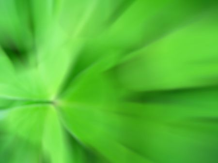 abstraction image of a clover trefoil photo