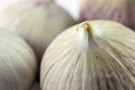 wild onion - clove of garlic macro image Stock Photo - 9351363