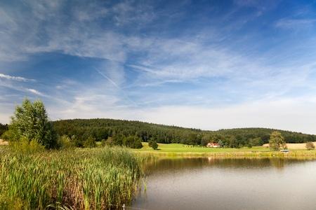 orla: Summer landscape at the shore of an idyllic lake