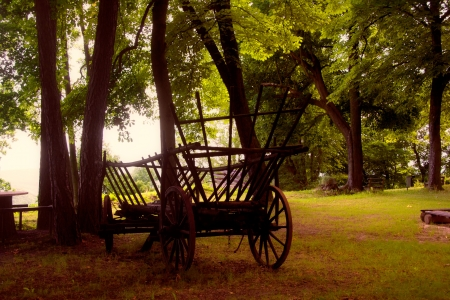 a medieval cart on the Kemenade Orlamuende photo