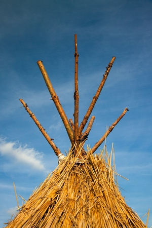 thatched roof: straw thatched roof in Front of blue sky