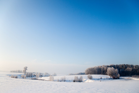 orla: idyllic winter landscape in Thuringia with a frozen pond