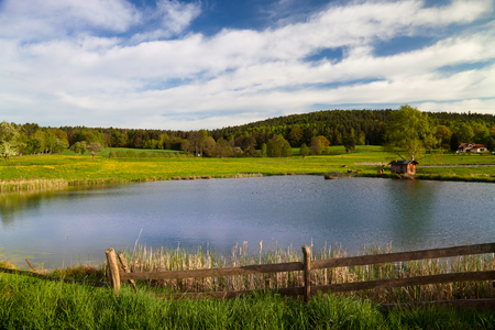 riparian: idyllic landscape in springtime with fish farming lake