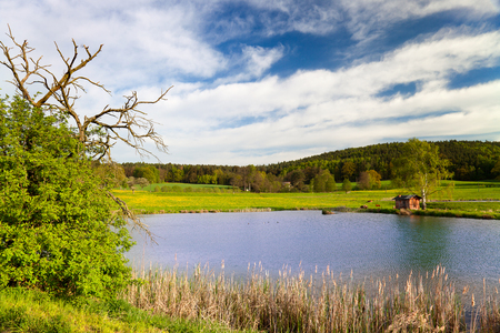 fish farming: idyllic landscape in springtime with fish farming lake