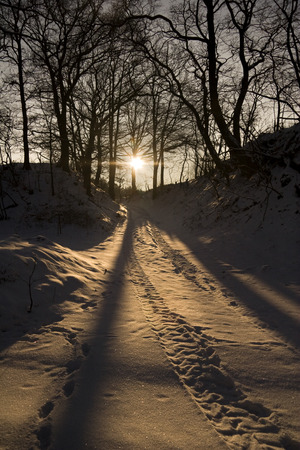 iciness: winter landscape at evening, forest track at sundown Stock Photo