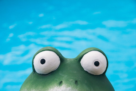 soluble: frog eye view Stock Photo